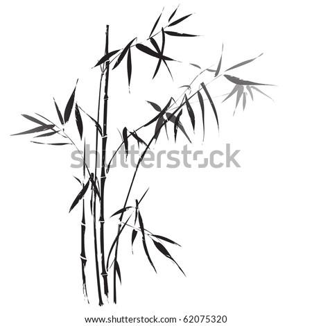 Bamboo branches - stock vector
