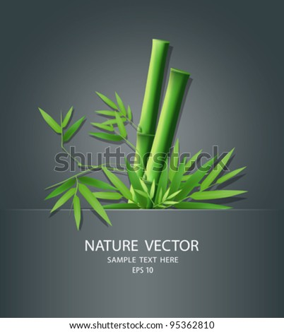 Bamboo idea in package, vector illustration - stock vector