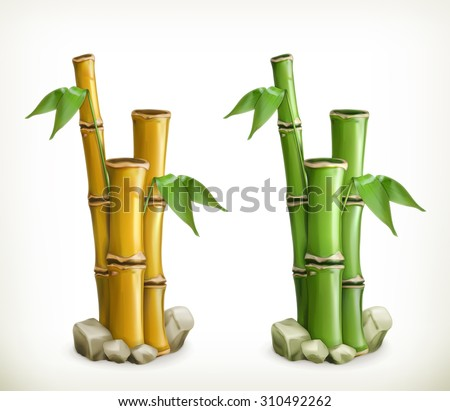 Bamboo, vector icon