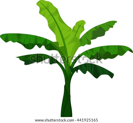 Banana Tree Cartoon For You Design