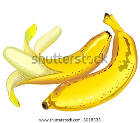 Bananas - stock vector