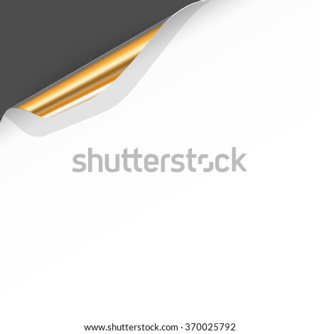 Banner with Curled White Paper Corner  - stock vector