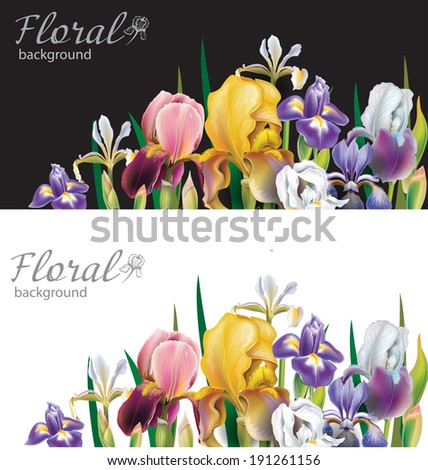 Banners with Iris flowers - stock vector
