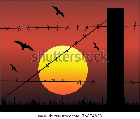 Barbed wire silhouette against the sunset - stock vector