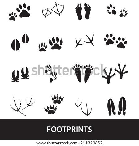 basic animal footprints set eps10 - stock vector