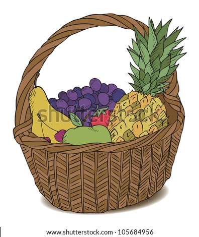 basket with different fruits color vector