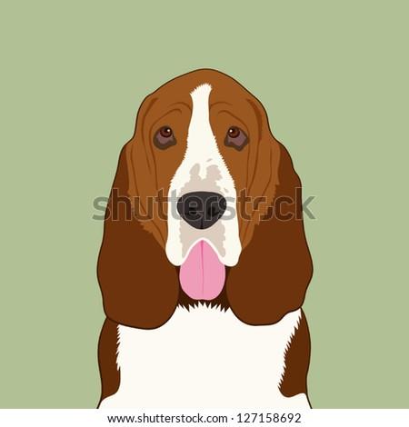 Basset hound, The buddy dog - stock vector