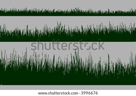 Beach Grass, short grass, Vector Design Element - stock vector