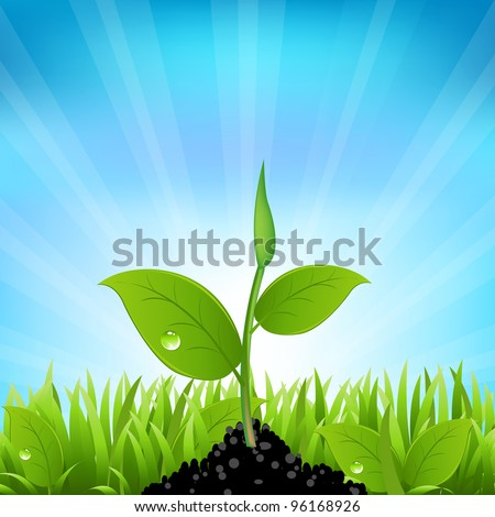 Beams And Grass, Vector Background - stock vector