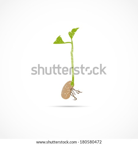 Bean Sprout Seedling Illustration
