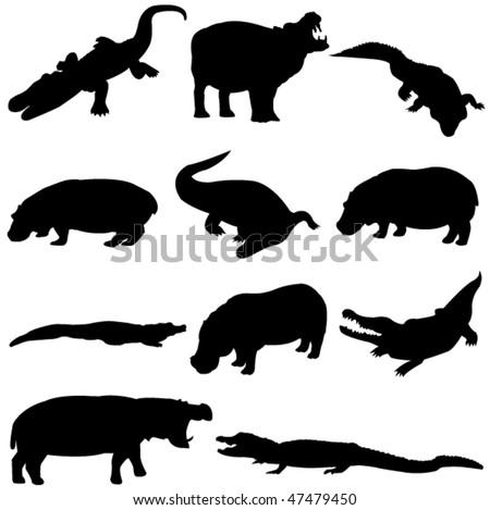 Beast duel: Hippos and crocodiles - stock vector