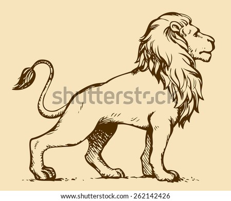 Beautiful african proud powerful nobility big leo standing and fierce looking for prey. Freehand ink drawn background sketchy in art scribble style pen on paper. Side view with space for text - stock vector