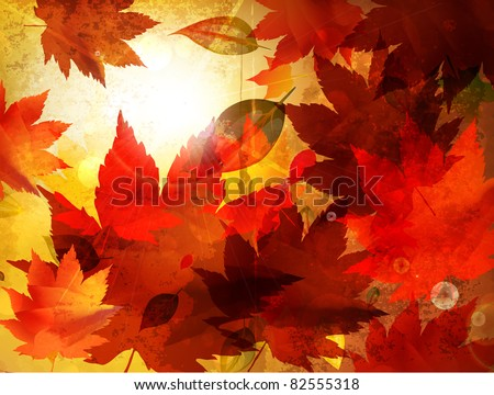 Beautiful autumn background for your design - stock vector
