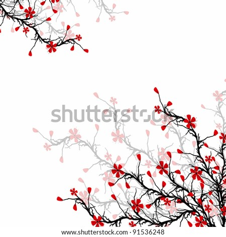 Beautiful blossom cherry on white background