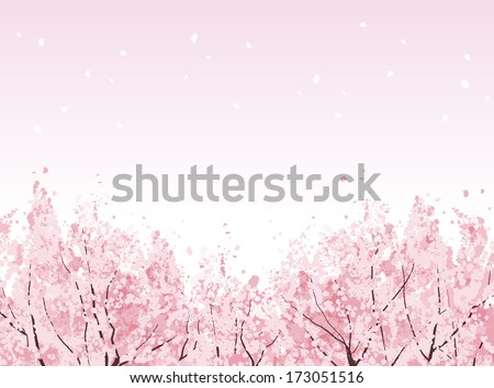 Beautiful Cherry blossom trees in bloom. File contains Clipping mask, Gradients. - stock vector