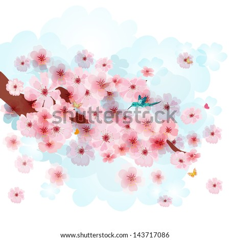 Beautiful cherry blossoms - stock vector