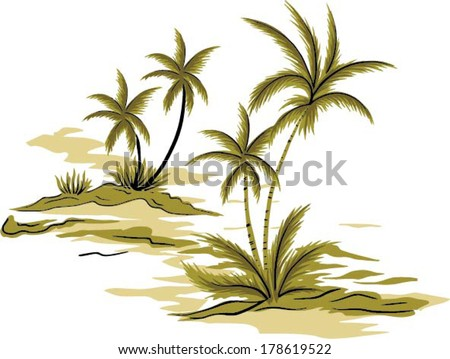 beautiful coconut palm tree. vector isolated  - stock vector