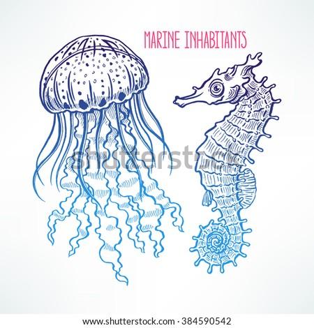Hand Drawn Sea Horse Jellyfish Turtle Stock Vector