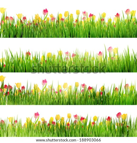 Beautiful easter border with grass and flowers. And also includes EPS 10 vector - stock vector