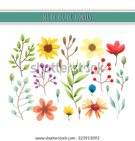 Beautiful floral collection with leaves and flowers. Wedding, romantic collection.Spring or summer design for invitation, wedding or greeting cards. Vector illustration - stock vector