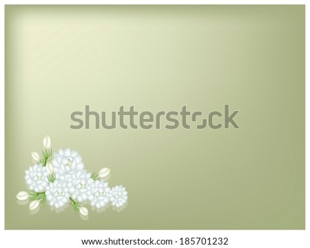 Beautiful Flower, An Illustration of Fresh White Jasmine Flowers on Green Leaves on Green Background with Copy Space for Text Decorated.  - stock vector