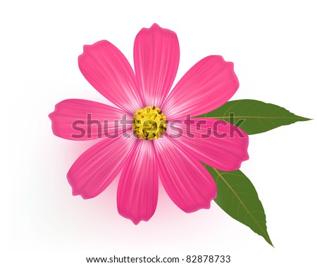 Beautiful Gerber Daisy flower with leaves. Vector. - stock vector