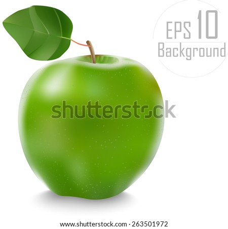 beautiful green apple with leaf. vector illustration of a realistic. done gradient mesh. eps 10 - stock vector