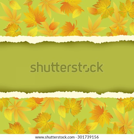 Beautiful green autumn background with colorful leaves pattern. Wallpaper with yellow, orange, red autumn leaf fall and torn paper - place for text. Vector illustration. - stock vector