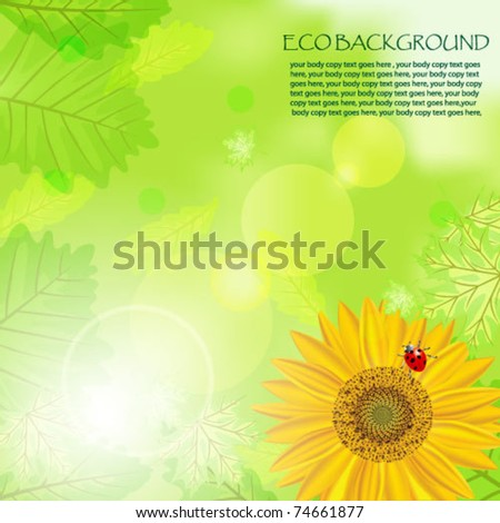 Beautiful green background with leaves, the sunflower and a ladybird - stock vector