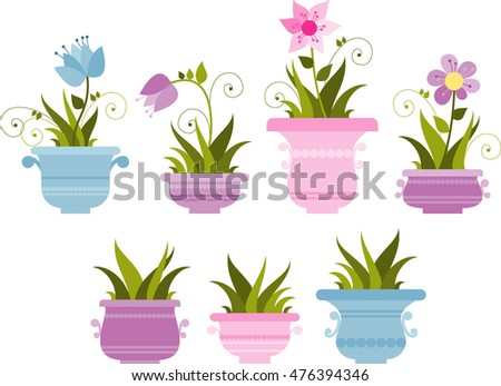 beautiful indoor plants in flowerpots