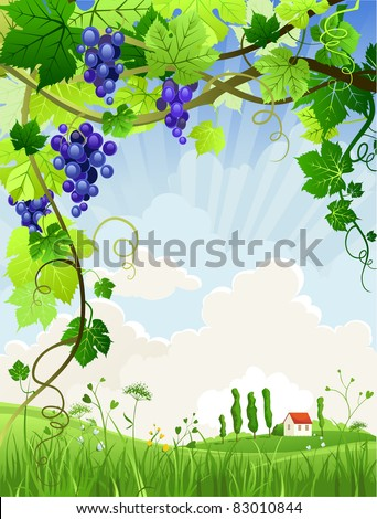 Beautiful landscape with a vineyard with space for text - stock vector