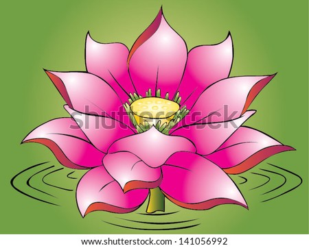 Beautiful lotus - stock vector