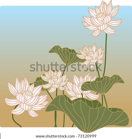 Beautiful Lotus Flower - stock vector