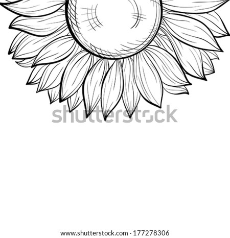 Beautiful Monochrome Black And White Background With A Floral Border Of Sunflower Hand Drawn