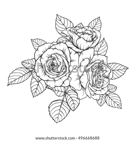 Beautiful Monochrome Black And White Bouquet Rose Isolated On Background Hand Drawn Design