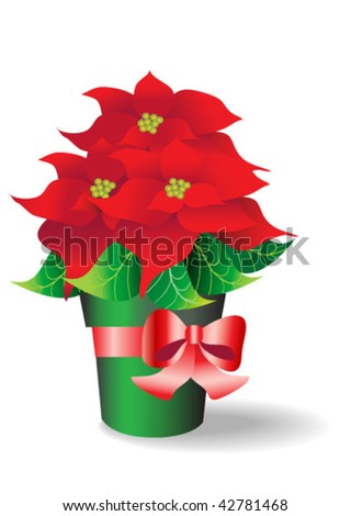 Beautiful Poinsettia with red ribbon - stock vector