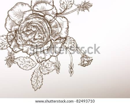 Beautiful rose vintage styled flower, black and white.