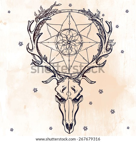 Beautiful scull tattoo  line art. Vintage deer, bull, elk, horns. Antlers with branches, leaves and ornate dream catcher with stars. Hand drawn. Vector illustration. Isolated. Ink on aged paper.  - stock vector