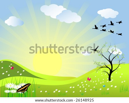 beautiful spring landscape with birds and butterflies illustrated