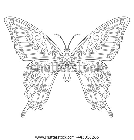 Beautiful butterfly stock images royalty free images for Beautiful butterfly coloring pages
