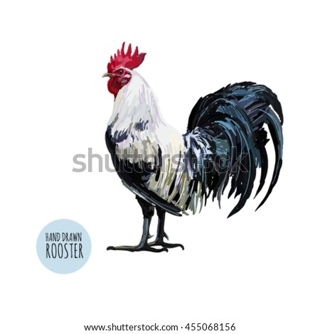 Beautiful vintage background illustration with rooster. Perfect for wallpapers, web page backgrounds, surface textures, textile. - stock vector