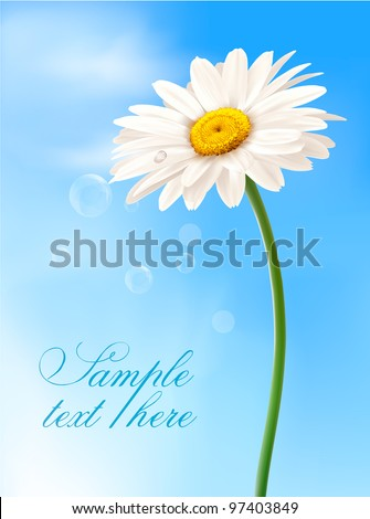 Beautiful white daisy in front of the blue sky. Vector. - stock vector