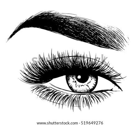 Woman Eye Perfect Eyebrows Makeup Look Stock Vector ...