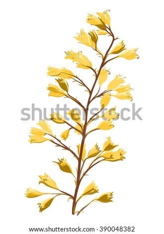 Beautiful yellow flowers, little flowers on a branch, vector illustration of spring blossom