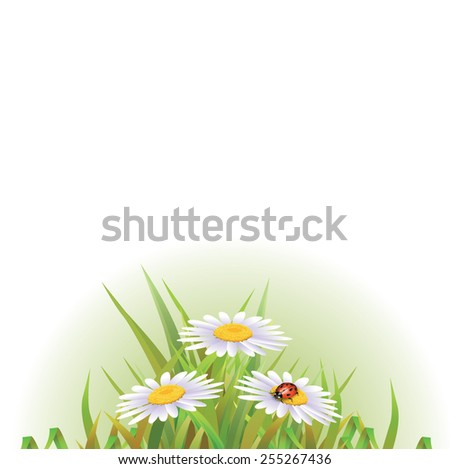 Beautyful camomiles design. Vector of summer background with gradient and radiance. - stock vector