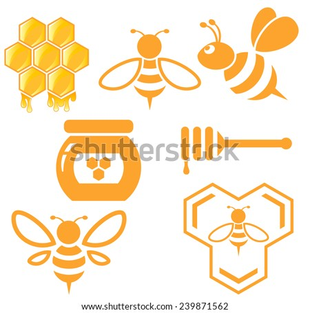 Bee and Honey set. Vector  - stock vector