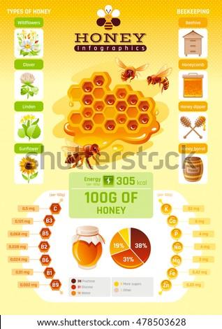 Bee honey template infographics vitamin mineral stock vector 2018 bee honey template infographics vitamin mineral diagram honeybee logo world map ccuart Gallery