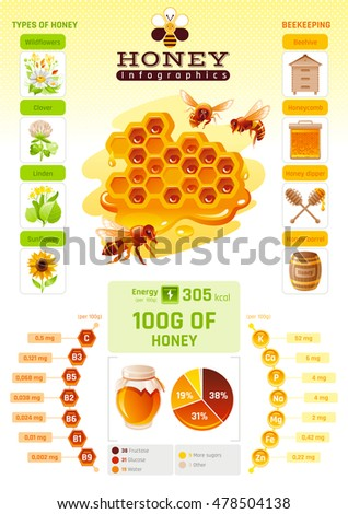 Bee honey template infographics vitamin mineral stock vector bee honey template infographics vitamin mineral diagram honeybee logo world map ccuart Images