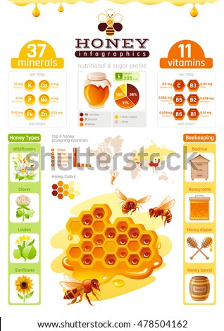 Bee honey template infographics vitamin mineral stock vector bee honey template infographics vitamin mineral diagram honeybee logo world map ccuart Gallery
