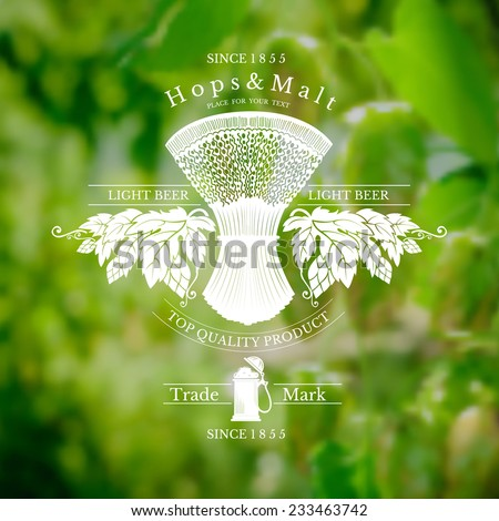 beer label with sheaf spikelet and hop on realistic background - stock vector